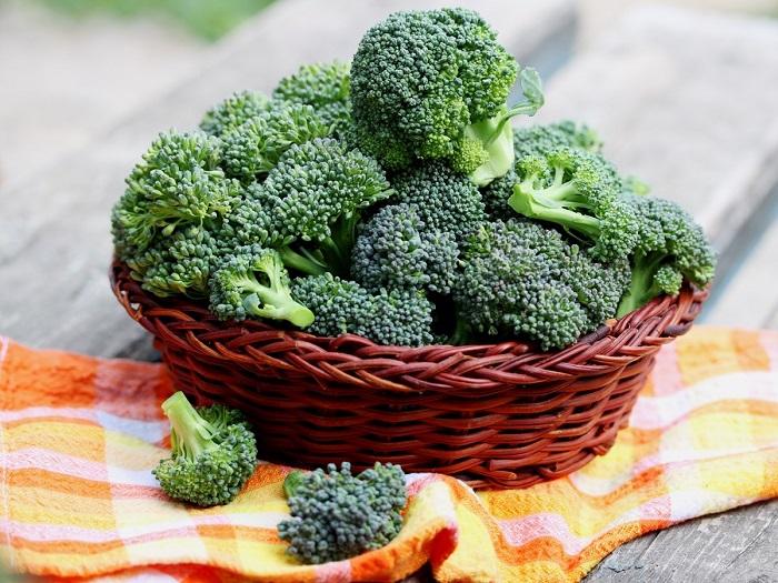 Vitamin E-Discover rich foods in vitamin E for your healthier life