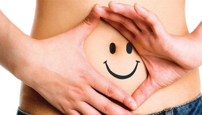 Microbiota   8 Elements that damage your Microbiota or intestinal flora