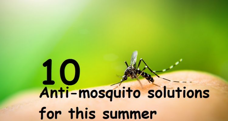 anti-mosquito solutions