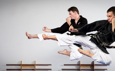 martial arts and yoga