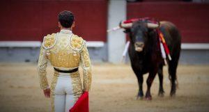 bullfighting festival