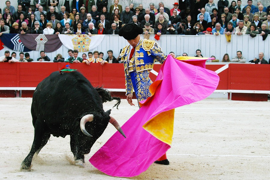 what is a bullfighting festival
